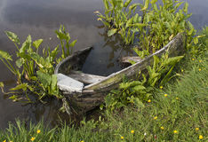 Wrecked row boat in pond Stock Photos
