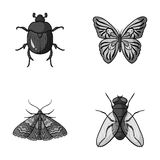 Wrecker, parasite, nature, butterfly .Insects set collection icons in monochrome style vector symbol stock illustration Stock Photography