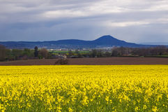 The Wrekin view Stock Photography