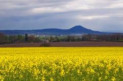 The Wrekin view. Wrekin view through the field stock photography