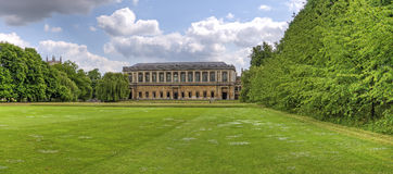 Wren Library Royalty Free Stock Images