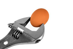 Wrench holding an egg isolate in white Stock Photography