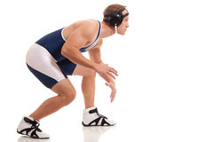 Wrestler. In a blue singlet. Studio shot over white Stock Photography