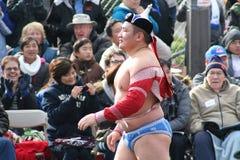 Wrestler Royalty Free Stock Photos