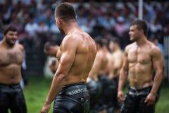 Wrestler in Kirkpinar Wrestling Festival Stock Image