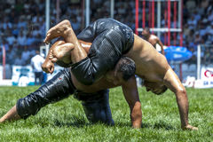 Wrestlers battle for victory at the Elmali Turkish Oil Wrestling Festival at Elmali in Turkey. Elmali is a town located in the Taurus Mountains in the Antalya Royalty Free Stock Photos