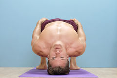 Wrestlers bridge. Fit shirtless athlete performs wrestlers bridge neck exercise on floor of gym royalty free stock image