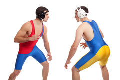 Wrestling. Male wrestlers. Studio shot over white Royalty Free Stock Images