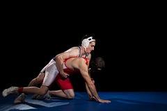 wrestling стоковая фотография