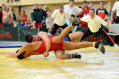 Free Wrestling Action Stock Images - 9887294