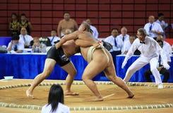 Wrestling de Sumo Imagens de Stock