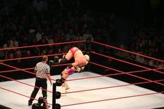 Wrestling stars Stock Photography