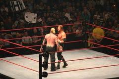 Wrestling stars Royalty Free Stock Images