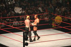 Wrestling stars Stock Image
