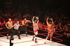 Wrestling stars Stock Images