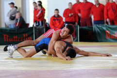 Wrestling team championship Royalty Free Stock Images