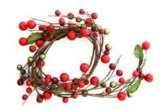 Wreth de la Navidad Fotografía de archivo libre de regalías