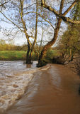Wrington Waterfall in flood Royalty Free Stock Photos