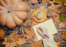 Wrinig femelle de main quelque chose dans le carnet sur le fond d'automne Image libre de droits