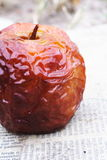 Wrinked Apple. Close up shot of a wrinkled red apple Royalty Free Stock Photos