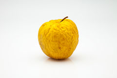 Wrinkled apple. Yellow apple in the process of decomposition Royalty Free Stock Photo