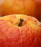Wrinkled apple closeup. Stock Photography