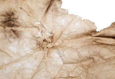 Wrinkled burnt paper Stock Photography