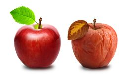 Wrinkled and fresh apple isolated Stock Photo