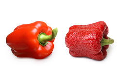 Wrinkled and fresh pepper isolated Royalty Free Stock Images