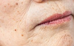 Free Wrinkled Old Asian Woman Skin Texture Stock Photo - 107068510