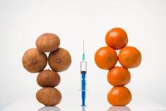 Wrinkled trocknete, glatte elastische Tangerinen in einer weiblichen Form und die Spritze Stockfotos