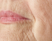 Wrinkled woman skin stock photos