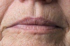 Wrinkled woman skin Royalty Free Stock Image