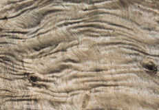 Wrinkled wood texture Stock Photos