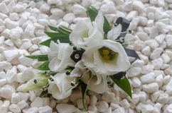 Wrist corsage. In white eustoma with black ribbon and diamond sprigs Stock Photos