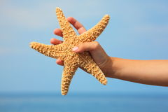 wrist för sjöstjärna för barnfokushand s royaltyfri fotografi