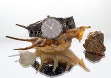 Wrist Watch. seashell Royalty Free Stock Photography