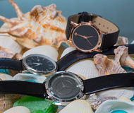 Wrist Watch. shells Royalty Free Stock Images