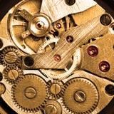 wristwatch clockwork Стоковые Фотографии RF