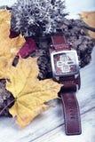 Wristwatch czasu przepustki kalendarza sezonu liszaju godziny strefy Konceptualnego korka Rzemienna patka zdjęcie stock