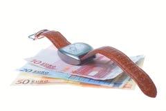 Wristwatch and euro money Royalty Free Stock Photos