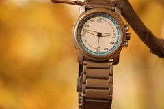 Wristwatch hanging over a branch royalty free stock photography