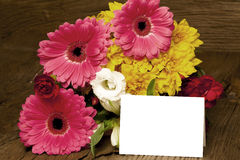 Writable greeting card with colorful flowers Stock Photos