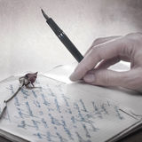 Write a love letter with a rose. Close up photo Royalty Free Stock Images