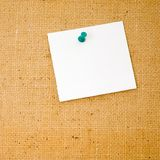 Write your own message on it!. Empty corkboard Royalty Free Stock Image