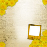 Writing abstract background  with dandelions Royalty Free Stock Photography