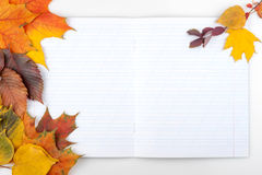 Writing-book and autumn leaves