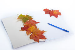 Writing-book, pen and autumn leaves. Royalty Free Stock Image