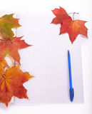 Writing-book, pen and autumn leaves. Royalty Free Stock Images