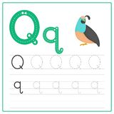 Writing card Alphabet Q. Writing card use for kid. A handwritten card. Cards can be used to teach preschoolers Stock Photography